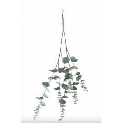 Branche décorative eucalyptus