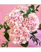Bouquet sur-mesure